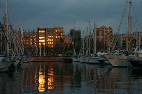 Boats in the marina...